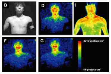 glowing humans auras shown by thermographic image from ultraweak photon emission experiment