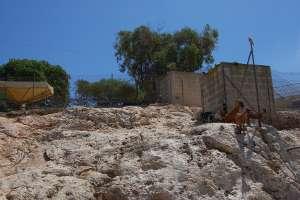 mountain goats enclosure animal park marsascala