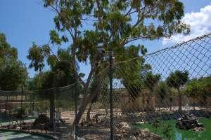 zoo malta emu ducks enclosure LWS animal park Inspire Marsascala