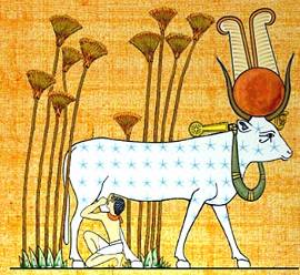 a look at the different egyptian myths about the apis bull Ancient egyptian religion there was no single, unified system of religious belief in ancient egypt there was a wide and unsystematic collection of beliefs and practices, which varied by location, social class, and over the 3000 years generally referred to collectively as 'ancient egypt.