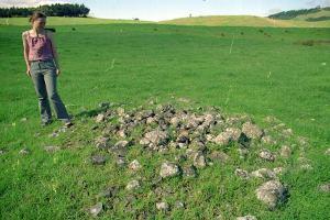landscape archaeology tapapakanga park green horizon archeoastronomy archaeoastronomy new zealand nz north island
