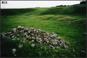 landscape archaeology tapapakanga park green archeoastronomy archaeoastronomy new zealand nz north island