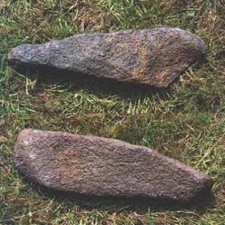 maori stone adzes waipoua forest tools weapons