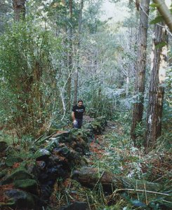 Waipoua Forest Stone City New Zealand - ancient structures North island - Maori or pre Maori - forbidden history