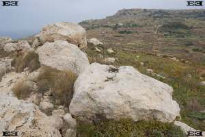 maltas temple builders fallen standing stones archaeoastronomy