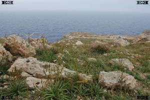 orthostat event horizon archaeoastronomy malta europe